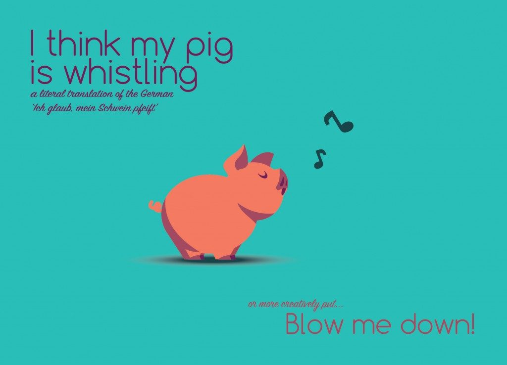 Pig 1024x738 – 300 Hairy Bears! Introducing the IDIOMASCOTS
