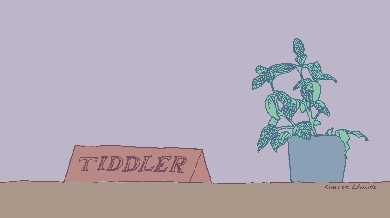 tiddler header image – A Day in the Life of the Office Plant